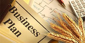 Изучение бизнес плана